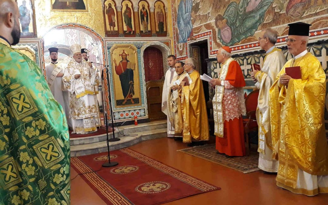 Diocesan Day for the Custody of Creation – Eparchy of Lungro, Calabria