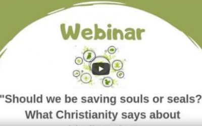 Season of Creation Webinar Now Online