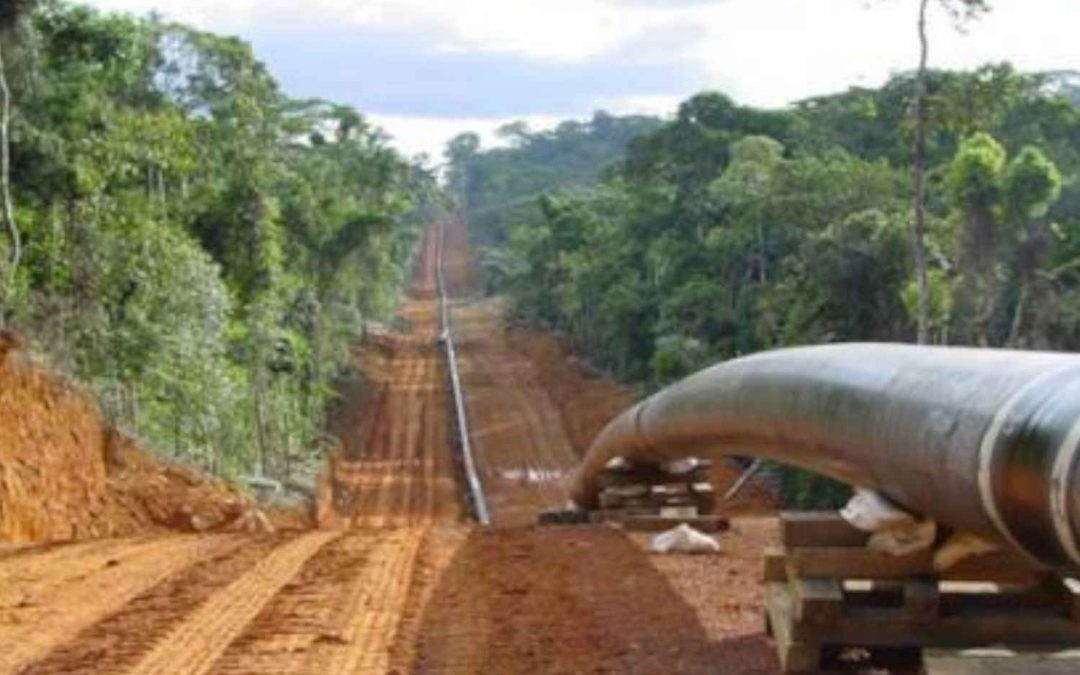 EACOP: the worrisome project encroaching African beauty