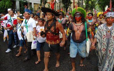 El expolio agrícola y el proselitismo agudizan los graves riesgos que enfrenta la Amazonia