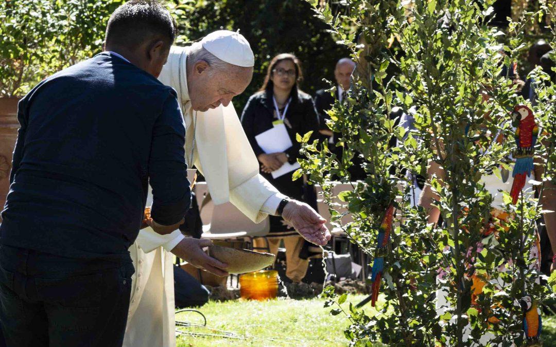 O Papa Francisco e o Vaticano incentivam católicos e católicas a participarem do Tempo da Criação