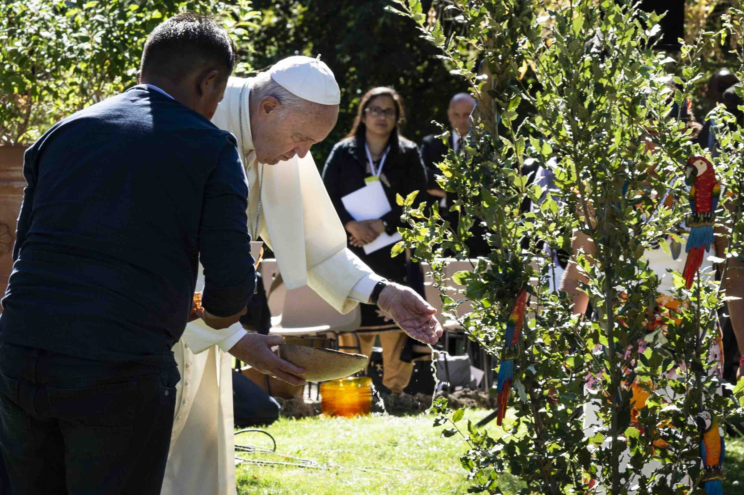 Pope Francis participates in a 2019 Season of Creation closing event at the Vatican. Photo: Laudato Si' Movement.