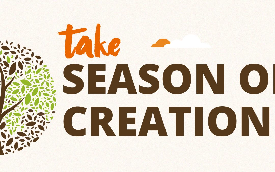 Test your Season of Creation knowledge: Take our quiz