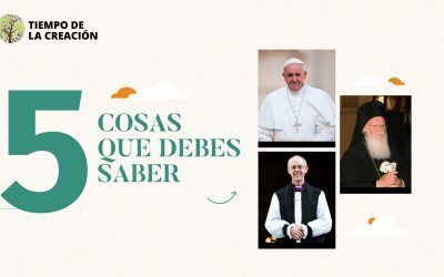 5 rzeczy, które warto wiedzieć o historycznym oświadczeniu papieża Franciszka dotyczącym Czasu dla Stworzenia