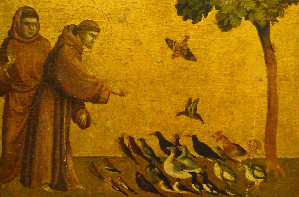 Following St. Francis in hope and generosity